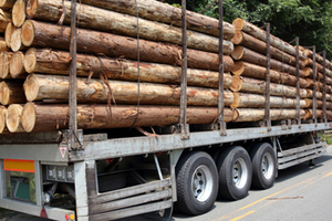 原木 伐採 搬送