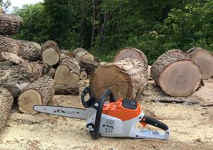 原木 伐採現場