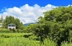 日本の森林事情を知る