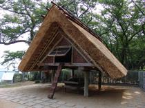 日本人の暮らしと木とのかかわり