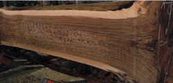 木の運命を左右する製材