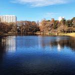 吉祥寺、井の頭公園周辺のインテリアショップの歴史