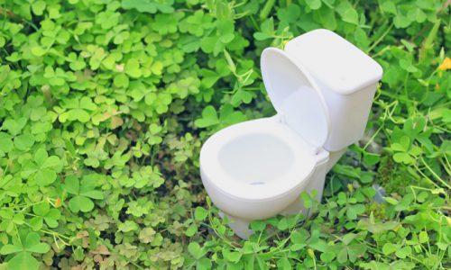 トイレの変遷と選び方