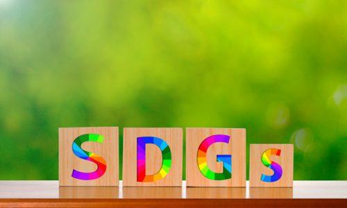 SDGsと無垢材家具の「良い関係」